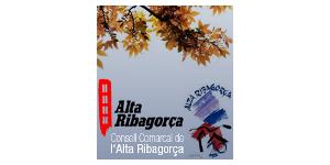 Consell Comarcal de l'Alta Ribagorça